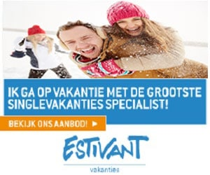 Estivant single wintersport banner