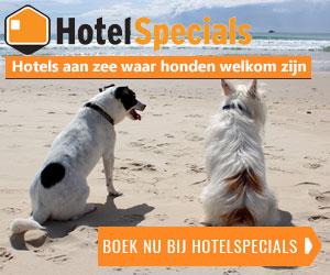 hotelspecials hond aan de kust banner